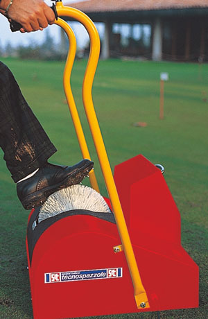 Automatic shoe-clean SIT brush by a golf field